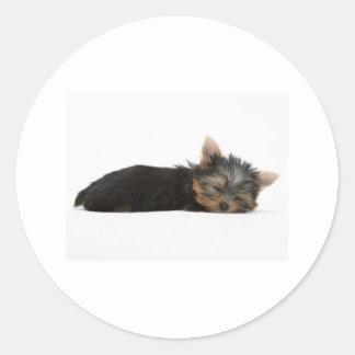 Yorkie Puppy Sleeping Classic Round Sticker