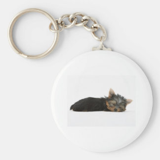 Yorkie Puppy Sleeping Key Ring