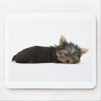 Yorkie Puppy Sleeping Mouse Mat
