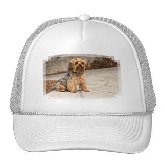 Yorkie - Spike Trucker Hat