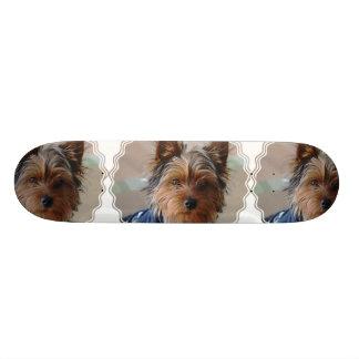 Yorkie Terrier  Skateboard