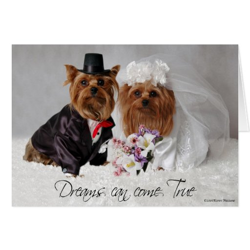 Yorkie Wedding Dreams Can Come True Greeting Card