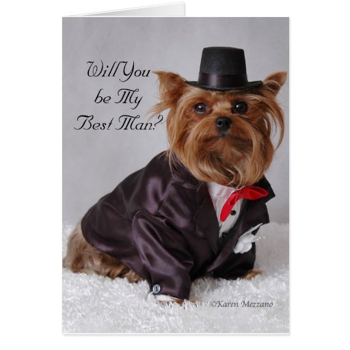 Yorkie , Will You be My Best Man? Cards