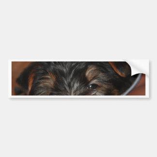 Yorkie Wink Bumper Sticker