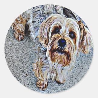 Yorkie Yorkshire Terrier Colored Round Sticker