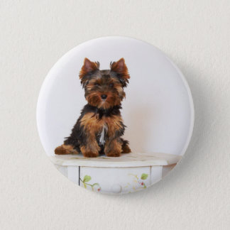 Yorkshire Terrier 6 Cm Round Badge