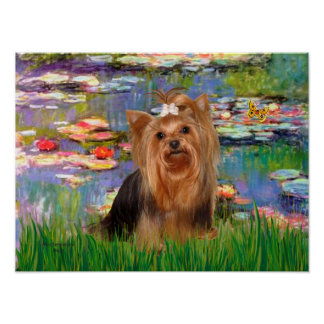 Yorkshire Terrier 7 - Lilies 2 Poster