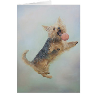 Yorkshire Terrier blank Greeting Card