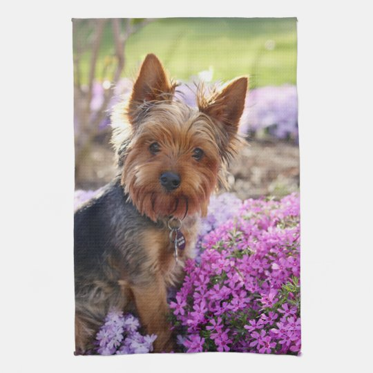 Yorkshire Terrier dog beautiful kitchen tea towel