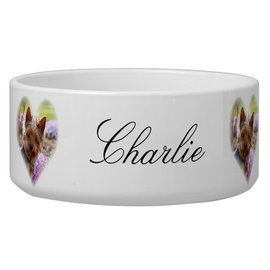 Yorkshire Terrier dog custom name pet bowl