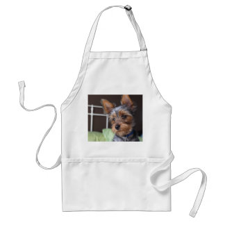 Yorkshire Terrier dog cute photo on white apron