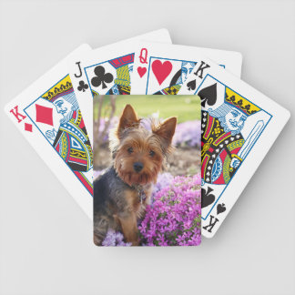 Yorkshire Terrier dog cute playing cards