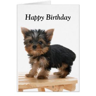 Yorkshire Terrier dog puppy custom birthday card