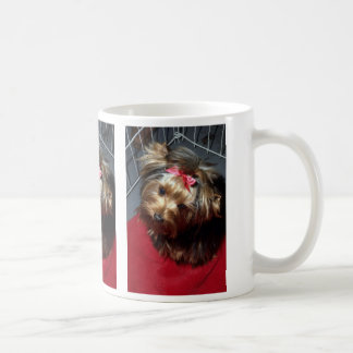 Yorkshire Terrier in show cage Basic White Mug