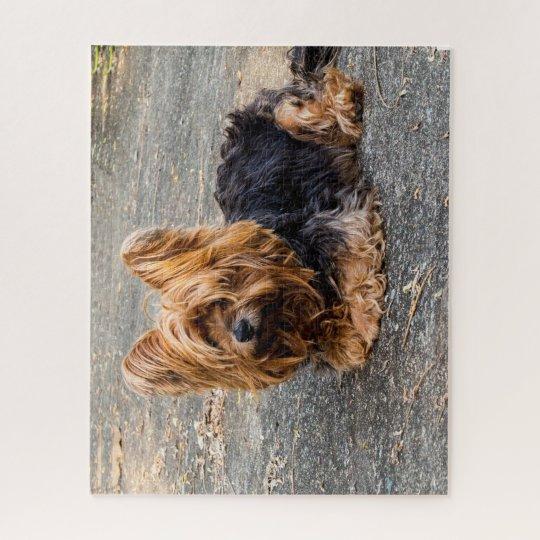 Yorkshire Terrier Jigsaw Puzzle | Zazzle.co.uk