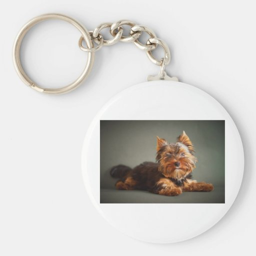Yorkshire Terrier Key Chains