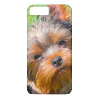 Yorkshire Terrier looking up iPhone 8 Plus/7 Plus Case