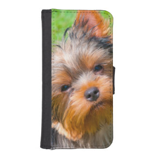 Yorkshire Terrier looking up iPhone SE/5/5s Wallet Case
