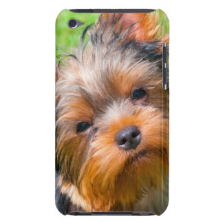 Yorkshire Terrier looking up iPod Touch Cases