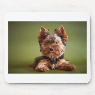 Yorkshire Terrier Mouse Mat