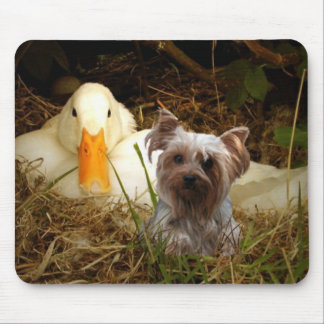 Yorkshire Terrier Mousepad Duck