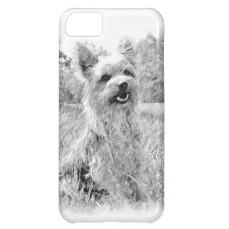 Yorkshire Terrier Pencil Drawing iphone 5 Case