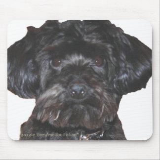 Yorkshire Terrier-Poodle Mix Mouse Mat