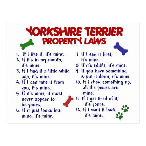 YORKSHIRE TERRIER Property Laws 2 Yorkie Post Cards