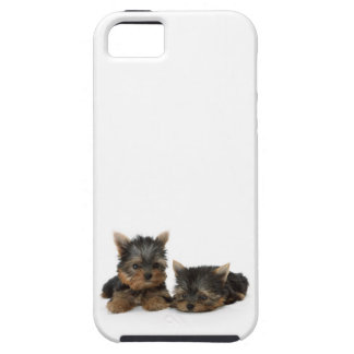 Yorkshire Terrier Puppies iPhone 5 Cover