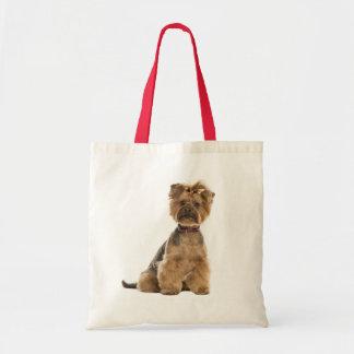 Yorkshire Terrier Puppy Dog Love Yorkies