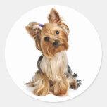 Yorkshire Terrier Puppy Dog Sticker / Seals