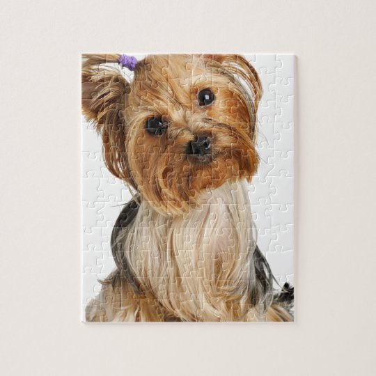 Yorkshire Terrier Puppy Jigsaw Puzzle | Zazzle.co.uk