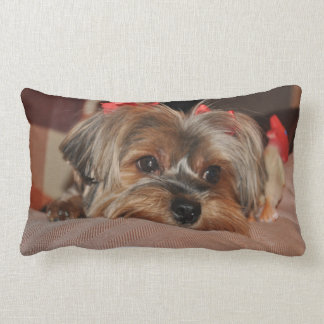 Yorkshire Terrier Puppy Lumbar Pillow