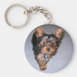 yorkshire terrier puppy.png key ring