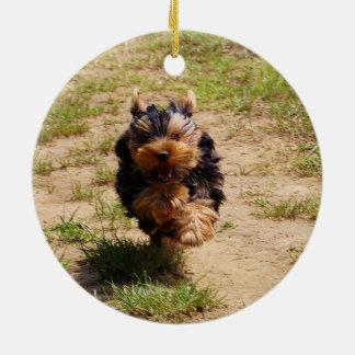 Yorkshire terrier running round ceramic decoration