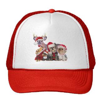 Yorkshire Terrier Santa Family Mesh Hat