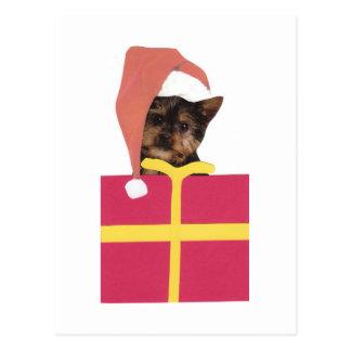 Yorkshire Terrier Santa Hat Postcard
