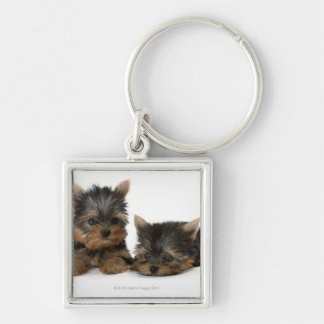 Yorkshire Terrier Silver-Colored Square Key Ring