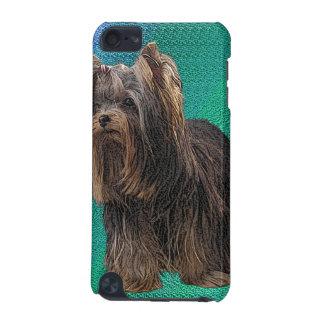 Yorkshire Terrier Speck Case