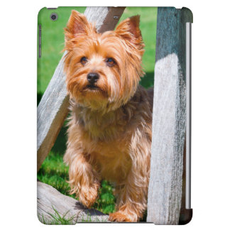 Yorkshire Terrier standing in a wagon wheel
