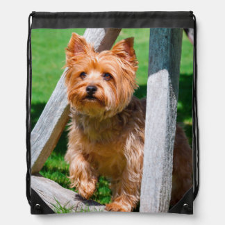 Yorkshire Terrier standing in a wagon wheel Drawstring Bag