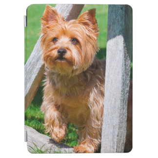 Yorkshire Terrier standing in a wagon wheel iPad Air Cover