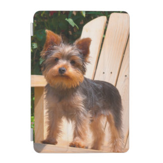 Yorkshire Terrier standing on wooden chair iPad Mini Cover