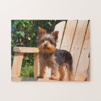 Yorkshire Terrier standing on wooden chair Jigsaw Puzzle