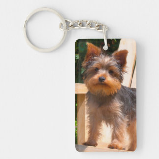 Yorkshire Terrier standing on wooden chair Key Ring