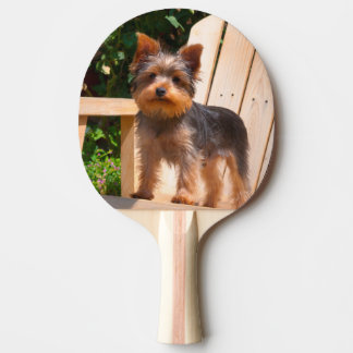Yorkshire Terrier standing on wooden chair Ping Pong Paddle