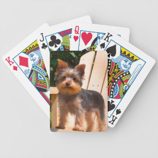 Yorkshire Terrier standing on wooden chair Poker Deck