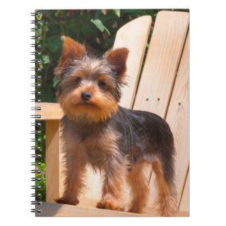 Yorkshire Terrier standing on wooden chair Spiral Notebook