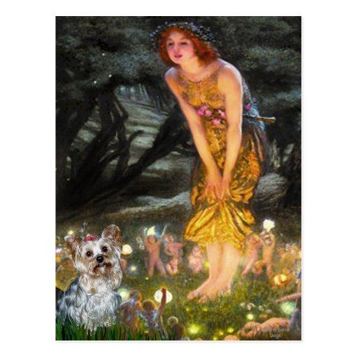 Yorkshire Terrier (T) - MidEve Postcard