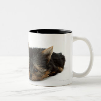 Yorkshire Terrier Two-Tone Coffee Mug